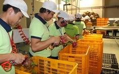 Thực phẩm nhập khẩu quá đắt là do thủ tục rườm rà
