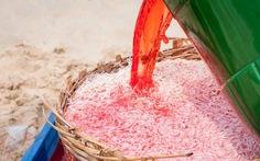 Không xác định được chất nhuộm đỏ ruốc tại Phú Yên