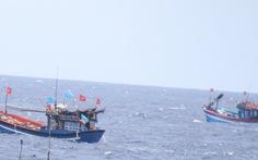 Khẩn trương tìm kiếm tàu cá bị mất liên lạc tại vùng biển Hoàng Sa