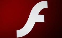 Người dùng máy tính cần cập nhật nhanh Adobe Flash