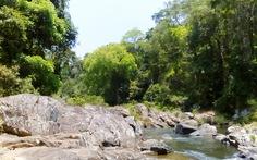 Chủ đầu tư xin rút ý định làm thủy điện khu bảo tồn