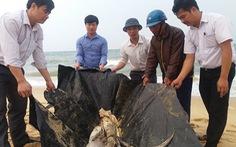 Làm sạch bờ cát ven biển Quảng Bình