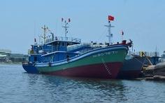 Đà Nẵng hạ thủy hai tàu cá vỏ thép thiết kế riêng
