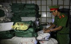 Sở Khoa học công nghệ Quảng Trị lấy mẫu cá nục xét nghiệm