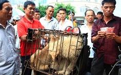 11 triệu người phản đối lễ hội thịt chó của Trung Quốc
