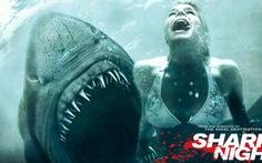 5 phim rùng rợn nhất về cá mập
