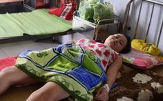 Quảng Nam: Hai người nhập viện do bị rắn lục đuôi đỏ cắn