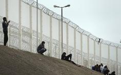 Anh bắt đầu xây tường ngăn người nhập cư