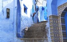 Khám phá thành phố màu xanh thiên đườngChefchaouen