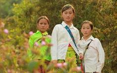 3 tác phẩm truyền hình VN tranh giải châu Á