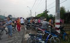 Dân mua ủng hộ vịt chết do xe bị lật