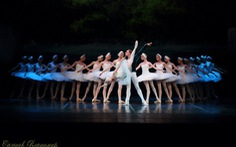 Ballet Kẹp hạt dẻ đến Hà Nội, Hồ thiên nga vào Sài Gòn