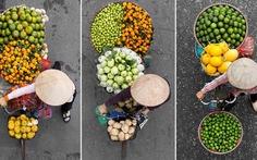Nhịp đời Sài Gòn dưới tán cây mận