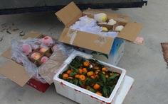 Bắt gần 2,6 tấn hoa quả có xuất xứ Trung Quốc