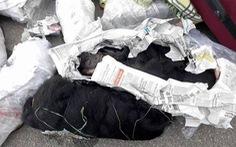 Bắt giữ xe khách chở 12 con voọc đen quý hiếm đông lạnh