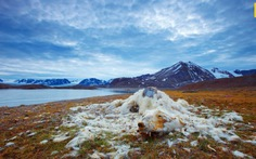 Biến đổi khí hậu: Một năm nhiều cột mốc