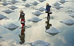 TP.HCM hỗ trợ diêm dân tiêu thụ 95.000 tấn muối tồn kho