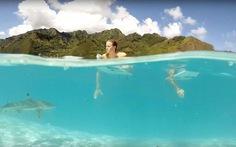 Xem những đoạn video du lịch dã ngoại tuyệt nhất