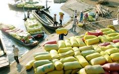 Bãi bỏ hàng loạt quy định khống chế xuất khẩu gạo