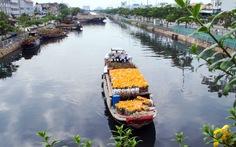 Hoa xuân đã cập đến bến Bình Đông