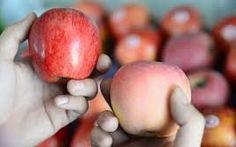 Tịch thu trái cây Trung Quốc rồi đem bán sung công quỹ