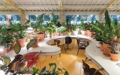 Khám phá tòa nhà 1.000 cây xanh ở Lisbon, Bồ Đào Nha