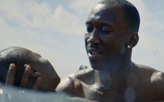 Phim về người da màu đồng tính giành giải Tinh thần độc lập Mỹ