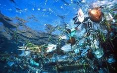 IUCN cảnh báo các đại dương bị ô nhiễm vì hạt nhựa cực nhỏ