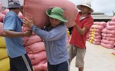 """Vụ giấy phép xuất khẩu gạo 20.000 USD: """"không đúng sự thật"""""""