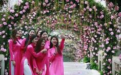 Lễ hội hoa hồng đầu tiên tại Việt Nam