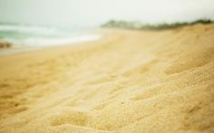 Truy xuất nguồn gốc cát