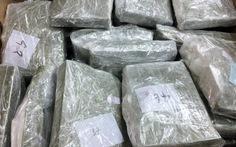 Vận chuyển thuê 100 bánh heroin với giá 200 triệu đồng