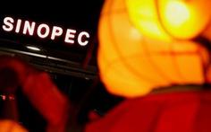 Interpol truy nã 3 quan chức Trung Quốc theo yêu cầu của Indonesia