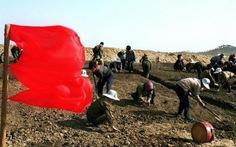 70% dân Triều Tiên sống nhờ lương thực viện trợ