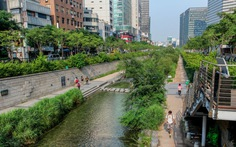Sông trong thành phố Nhìn ra ngoài quy hoạch và sử dụng đất