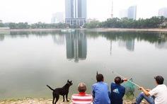 Đề xuất lấp một phần hồ Thành Công để xây chung cư
