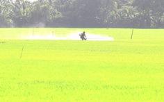 3 tháng, VN nhập trên 4.000 tỉ đồng thuốc trừ sâu, trừ cỏ...