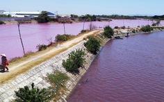 Tìm mọi cách ngăn nước xả thải chảy ra sông Chà Và