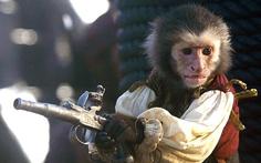 Người đẹp Cướp biển Caribe bị nói ác với khỉ diễn chung