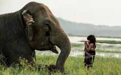 'Rồng rắn' đi xem ảnh Việt Nam của Réhahn ở Sài Gòn