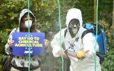 Một triệu người phản đối thuốc diệt cỏ của Monsanto