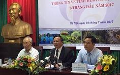 Tổng cục khẳng định du lịch biển miền Trung đã phục hồi