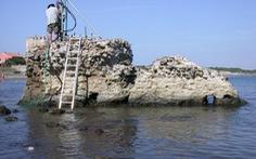 Giải mã sự trường tồn của đê biển thời La Mã