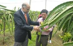Ấn Độ muốn sớm đưa nông dân sang Việt Nam học trồng xoài