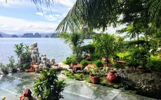 Xử lý việc xây dựng trái phép trên vịnh Bái Tử Long