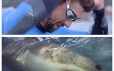 Phelps bơi 100m thua cá mập trắng 2 giây