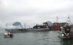 Tạm ngưng hoạt động 14 tàu du lịch vỏ gỗ trên vịnh Hạ Long