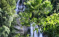 Khám phá Vườn quốc gia Xuân Sơn