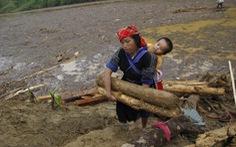 Người dân Yên Bái đổ xô mót gỗ sau lũ