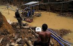 Tòa án Brazil ra tay cứu rừng Amazon